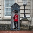 Buckingham Palace snow Household Cavalry