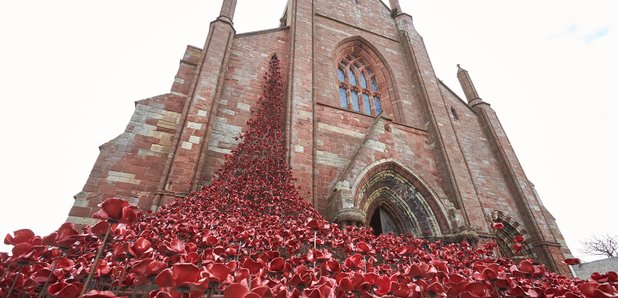Poppies Kirkwall St Magnus