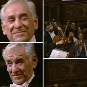 leonard bernstein eyebrows